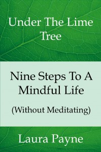 final Nine_Steps_To_A_Mind_Cover_for_Kindle